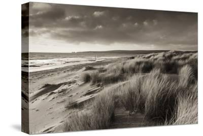 Windswept Sand Dunes on the Beach at Studland Bay, with Views Towards Old Harry Rocks, Dorset-Adam Burton-Stretched Canvas Print