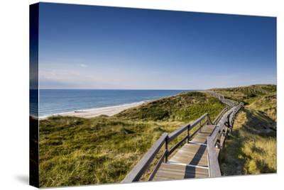Wodden Path in the Dunes, Wenningstedt, Sylt Island, Northern Frisia, Schleswig-Holstein, Germany-Sabine Lubenow-Stretched Canvas Print