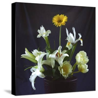 Flower Bouquet-Anna Miller-Stretched Canvas Print
