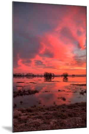 Fiery Marsh Sunset Sky--Mounted Photographic Print