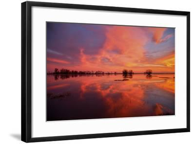 Fiery Marsh Sunset and Reflection--Framed Photographic Print