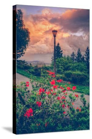 Spring Storm at Pittock Mansion, Portland Oregon--Stretched Canvas Print