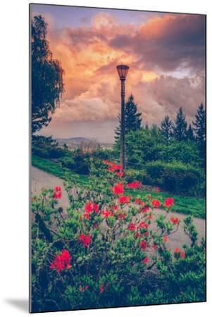 Spring Storm at Pittock Mansion, Portland Oregon--Mounted Photographic Print