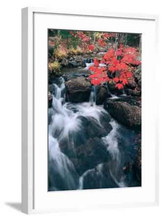 Jordan Stream in Autumn II, Maine Coast--Framed Photographic Print