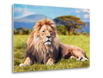 Big Lion Lying on Savannah Grass. Landscape with Characteristic Trees on the Plain and Hills in The-Michal Bednarek-Metal Print