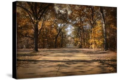 Open for Beauty-Jai Johnson-Stretched Canvas Print