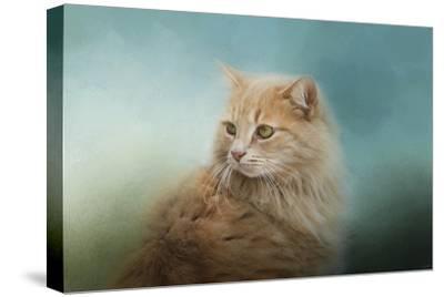 Over Her Shoulder-Jai Johnson-Stretched Canvas Print