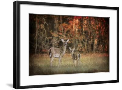 Just after Sunrise-Jai Johnson-Framed Giclee Print