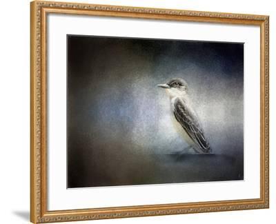 Eastern Kingbird Portrait-Jai Johnson-Framed Giclee Print