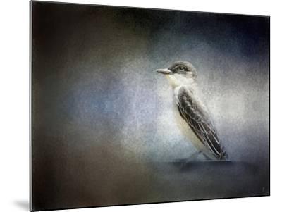 Eastern Kingbird Portrait-Jai Johnson-Mounted Giclee Print