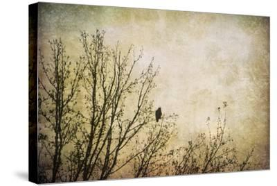 Greeting the Sun-Jai Johnson-Stretched Canvas Print