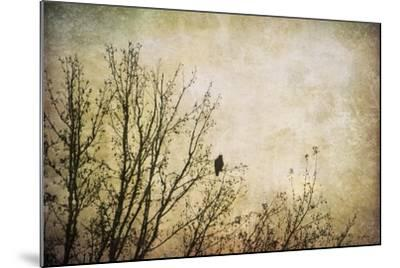 Greeting the Sun-Jai Johnson-Mounted Giclee Print