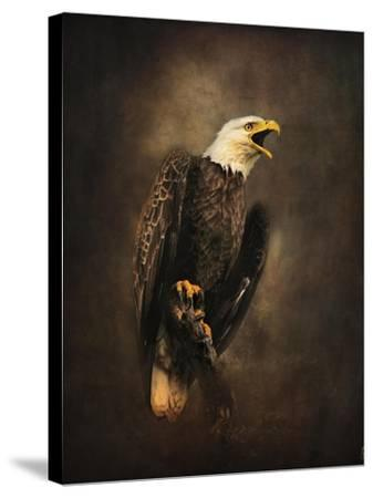 Crying for the Lost Bald Eagle-Jai Johnson-Stretched Canvas Print
