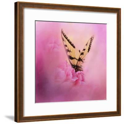 Butterfly on the Azaleas-Jai Johnson-Framed Giclee Print