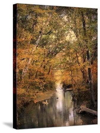 Autumn Riches 2-Jai Johnson-Stretched Canvas Print