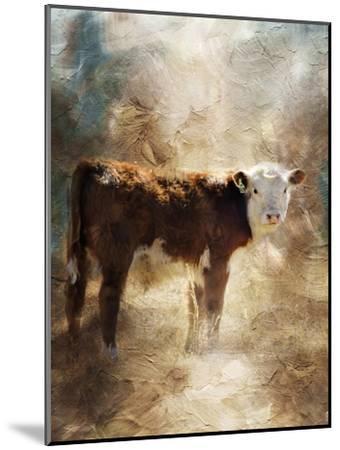 Calf in the Sunday Sun-Jai Johnson-Mounted Giclee Print