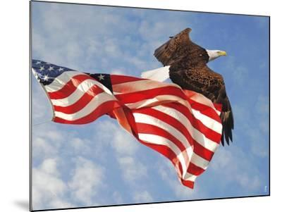 Flight of Freedom Bald Eagle-Jai Johnson-Mounted Giclee Print