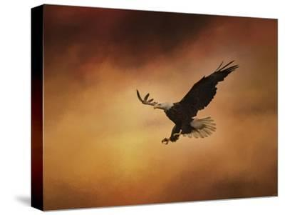 No Fear-Jai Johnson-Stretched Canvas Print