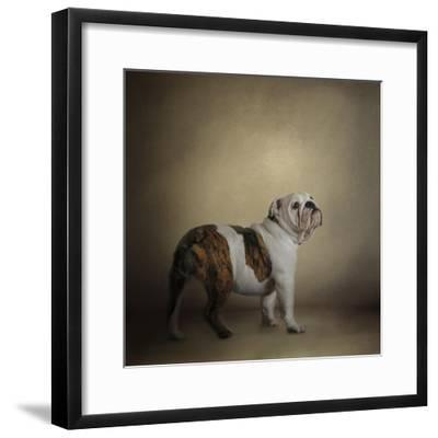 I Think I Smell a Treat Bulldog-Jai Johnson-Framed Giclee Print