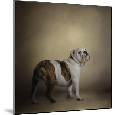 I Think I Smell a Treat Bulldog-Jai Johnson-Mounted Giclee Print