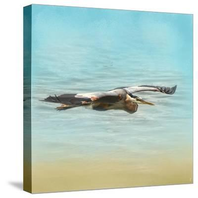 Arrival of the Blue Heron-Jai Johnson-Stretched Canvas Print