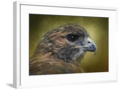 Red Tailed Hawk at Reelfoot-Jai Johnson-Framed Giclee Print