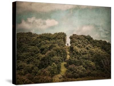 Uphill Climb-Jai Johnson-Stretched Canvas Print