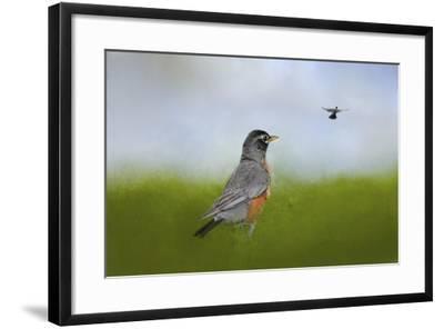 Robin in the Field-Jai Johnson-Framed Giclee Print