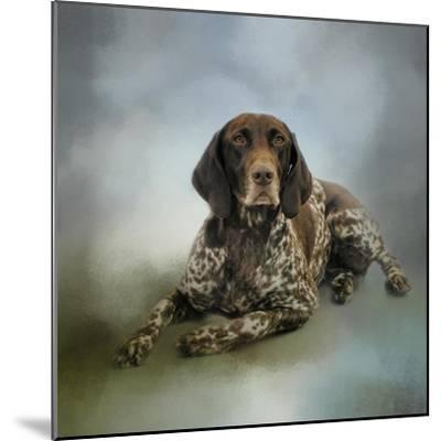 Waiting for a Cue German Shorthaired Pointer-Jai Johnson-Mounted Giclee Print