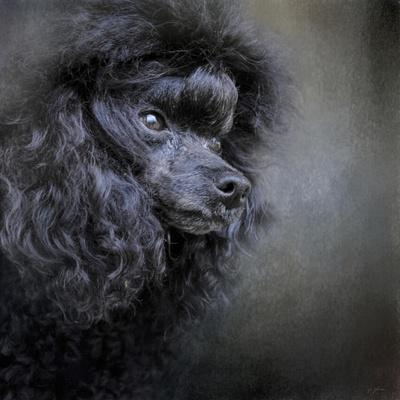 Snack Spotter Toy Black Poodle-Jai Johnson-Mounted Giclee Print