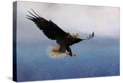 Snowy Flight Bald Eagle-Jai Johnson-Stretched Canvas Print