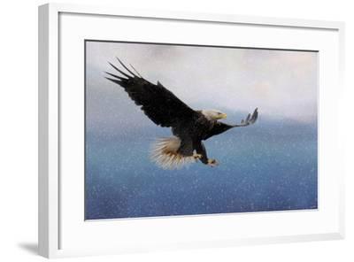 Snowy Flight Bald Eagle-Jai Johnson-Framed Giclee Print
