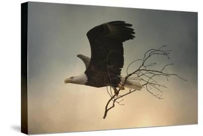 Stick Delivery-Jai Johnson-Stretched Canvas Print