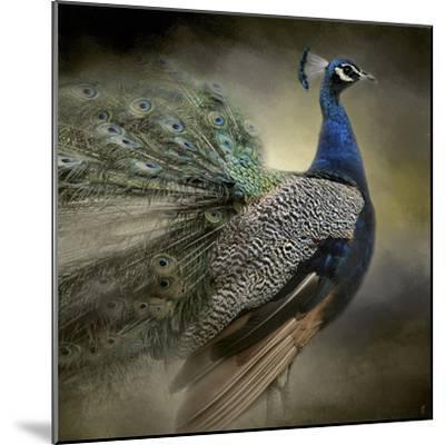 Peacock 5-Jai Johnson-Mounted Giclee Print