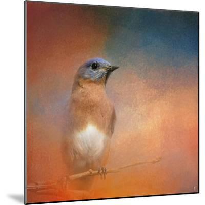 Summer Day Bluebird-Jai Johnson-Mounted Giclee Print