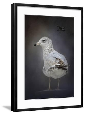 Perched Nearby Gull-Jai Johnson-Framed Giclee Print