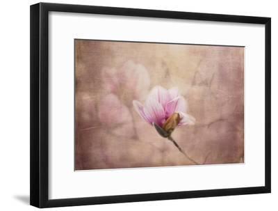 Pink Magnolia 2-Jai Johnson-Framed Giclee Print