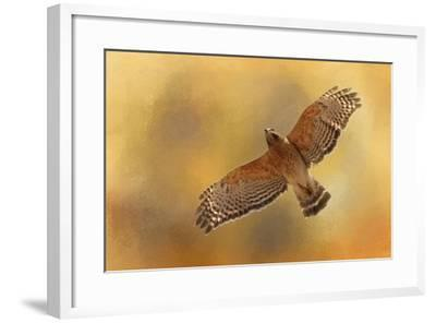 Raptors Afternoon Flight-Jai Johnson-Framed Giclee Print