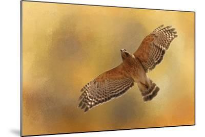 Raptors Afternoon Flight-Jai Johnson-Mounted Giclee Print