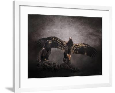 The Protector Juvenile Bald Eagles-Jai Johnson-Framed Giclee Print