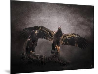 The Protector Juvenile Bald Eagles-Jai Johnson-Mounted Giclee Print