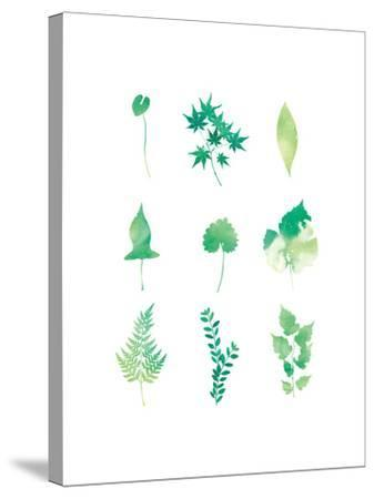Liveleaves-sooyo-Stretched Canvas Print