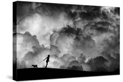 Prelude to the Dream-Hengki Lee-Stretched Canvas Print