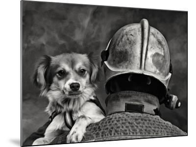 Dog's Best Friend.-Renato J.-Mounted Photographic Print
