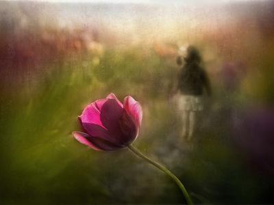 A Pink Childhood Memory-Shenshen Dou-Framed Photographic Print