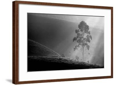 Itself on a Long Journey-Saelanwangsa-Framed Photographic Print