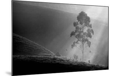 Itself on a Long Journey-Saelanwangsa-Mounted Photographic Print