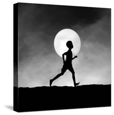 The Dream Catcher-Hengki Lee-Stretched Canvas Print