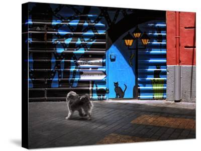 The Street Cats.-Juan Luis-Stretched Canvas Print