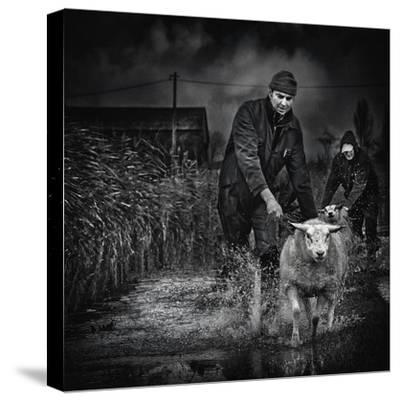 Escape from the Flood-Piet Flour-Stretched Canvas Print